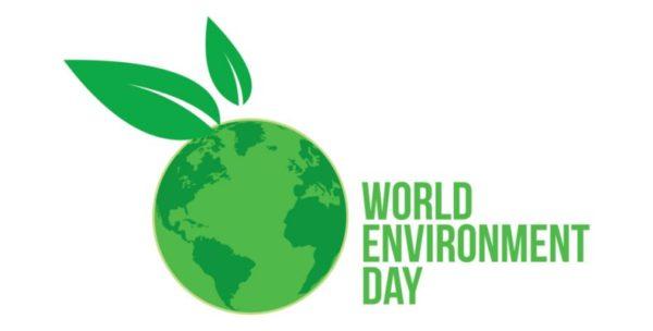 Környezetvédelmi világnap: június 5.